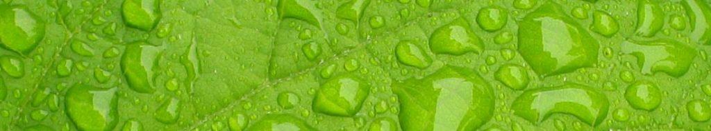Europe Ecologie - Les Verts de l'Ain