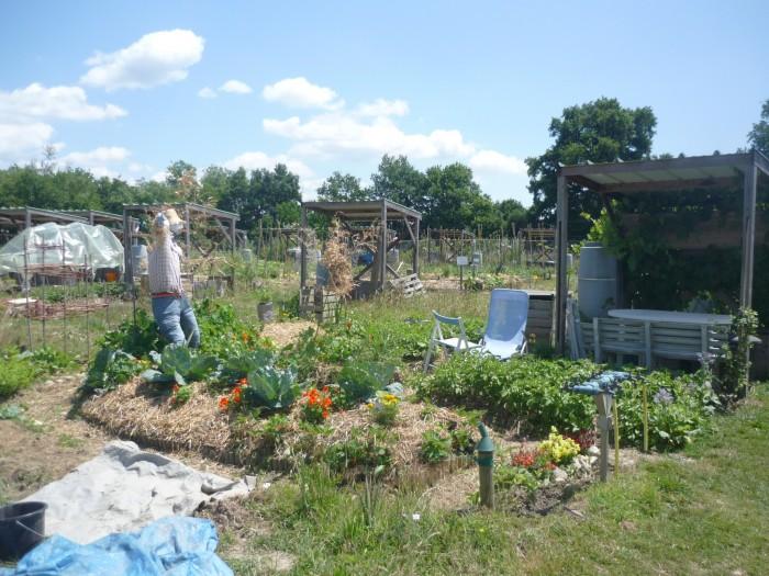 Jardin ouvrier eelv ain for Jardin ouvrier